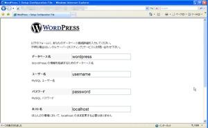 WordPress設定入力画面